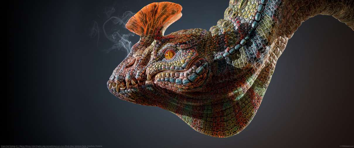 Dragon Bust Redesign 02 ultrawide achtergrond